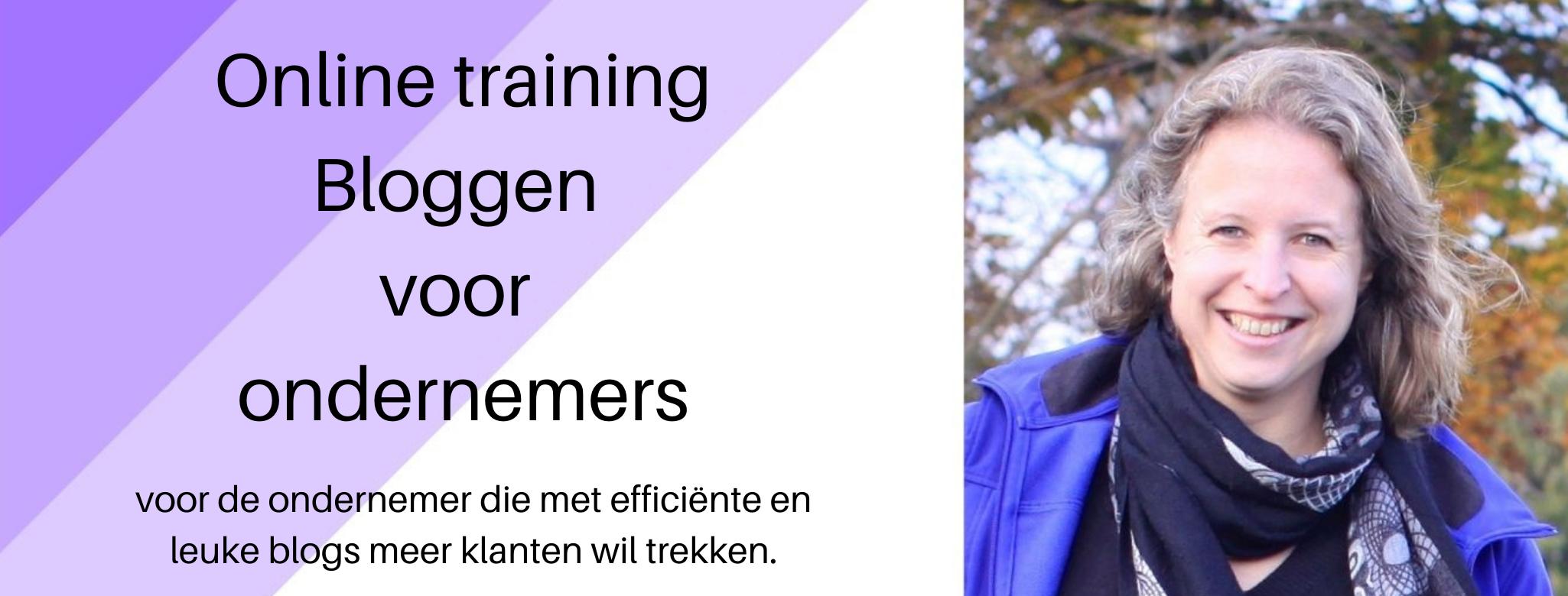 Online training Bloggen voor ondernemers